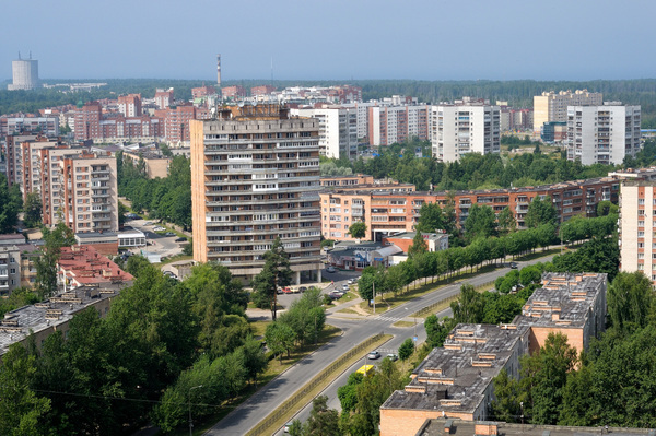 сосновый бор фото города