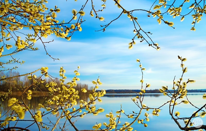 апрель скачать торрент - фото 2