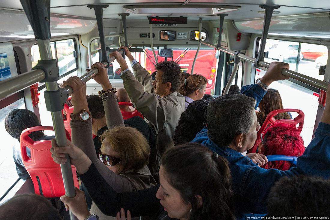 Студентки колледжа в автобусе