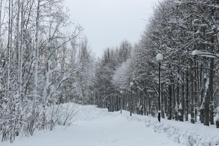 Уборка снега из-под барьерного ограждения