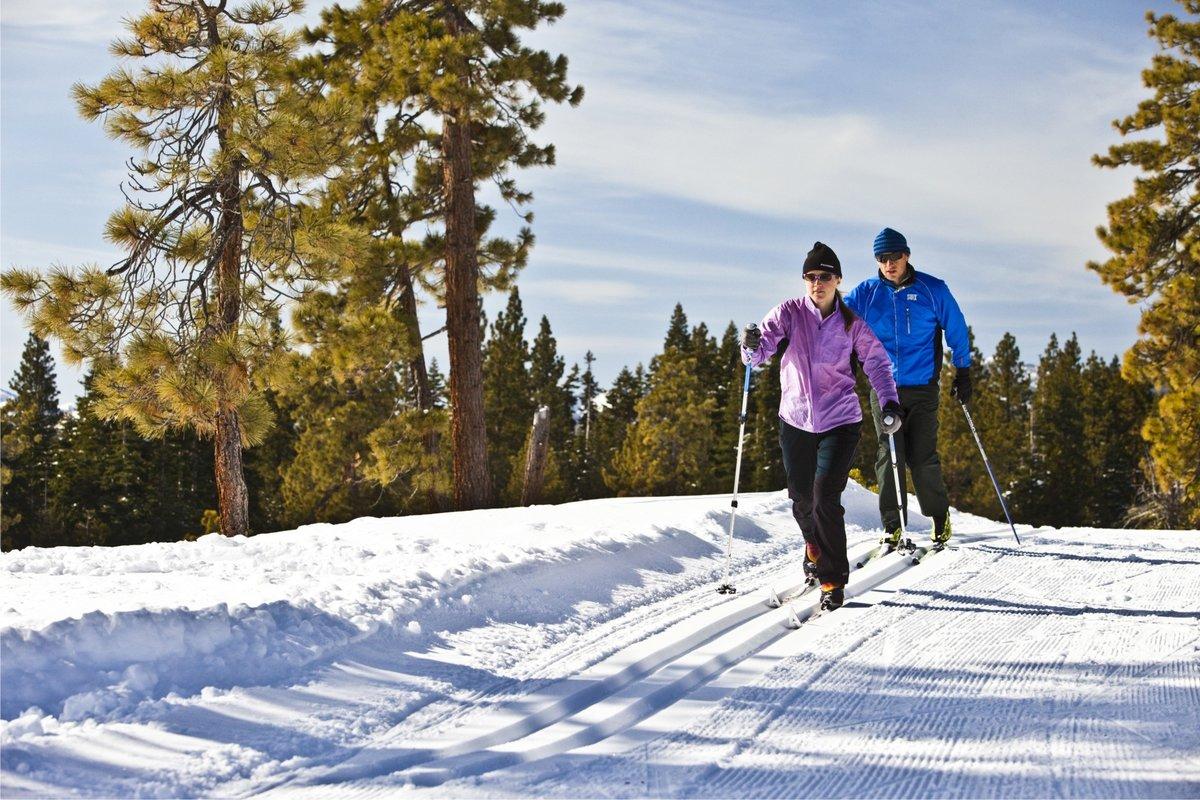 Люди на лыжах в картинках