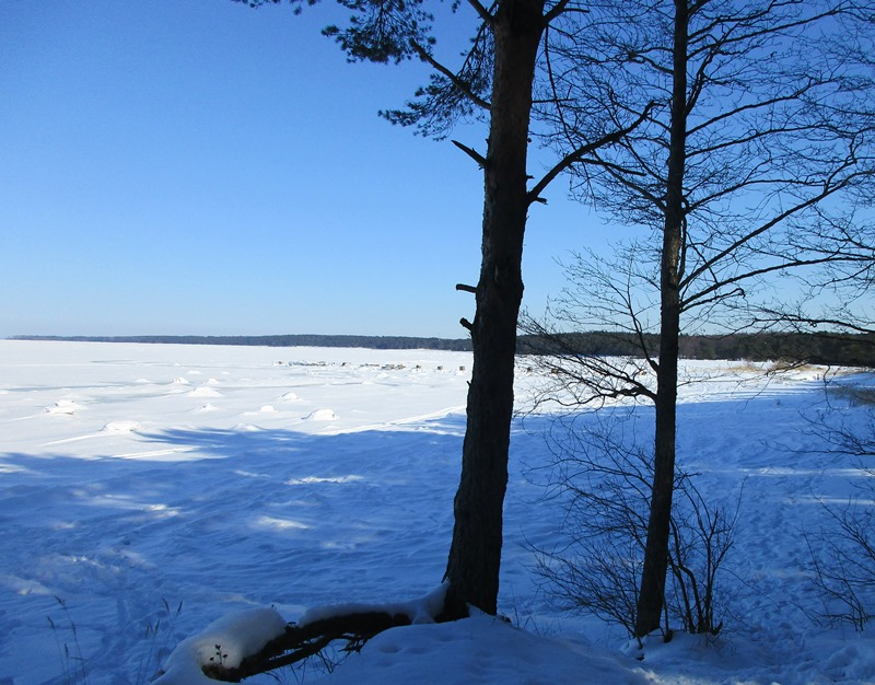 фото погода в ленинградской области таких