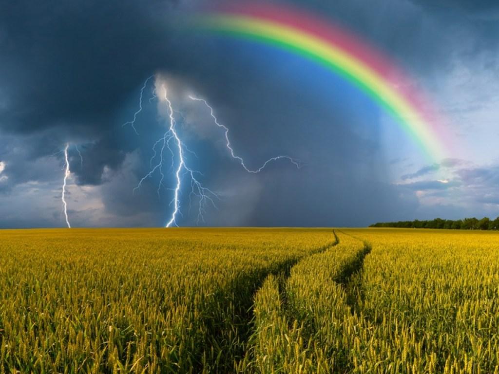 Жаркую, но дождливую погоду обещают синоптики в Курской области 28 июля