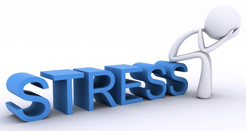 Ученые обнаружили, что стресс, испытанный в раннем возрасте, продлевает жизнь